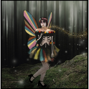 Large Rainbow Glitter Fairy Wings